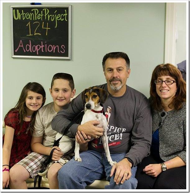 adopting Nellie