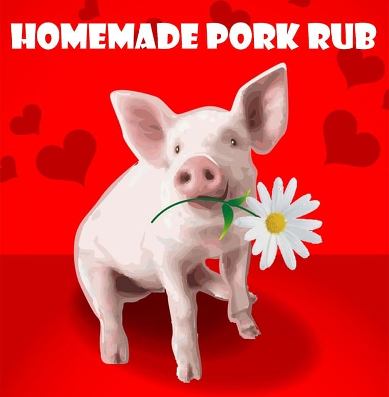 Grilling up some pork? Try this easy to make Homemade Pork Rub at This Mama Cooks! On a Diet - thismamacooks.com