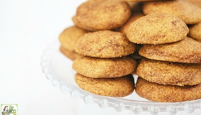 Gluten Free Rice Flour Snickerdoodles