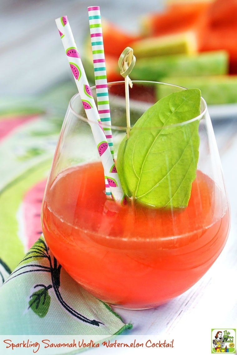 The best fresh watermelon cocktail for summer! This Sparkling Savannah Vodka Watermelon Cocktail recipe is the ideal summer cocktail for your backyard bbq!