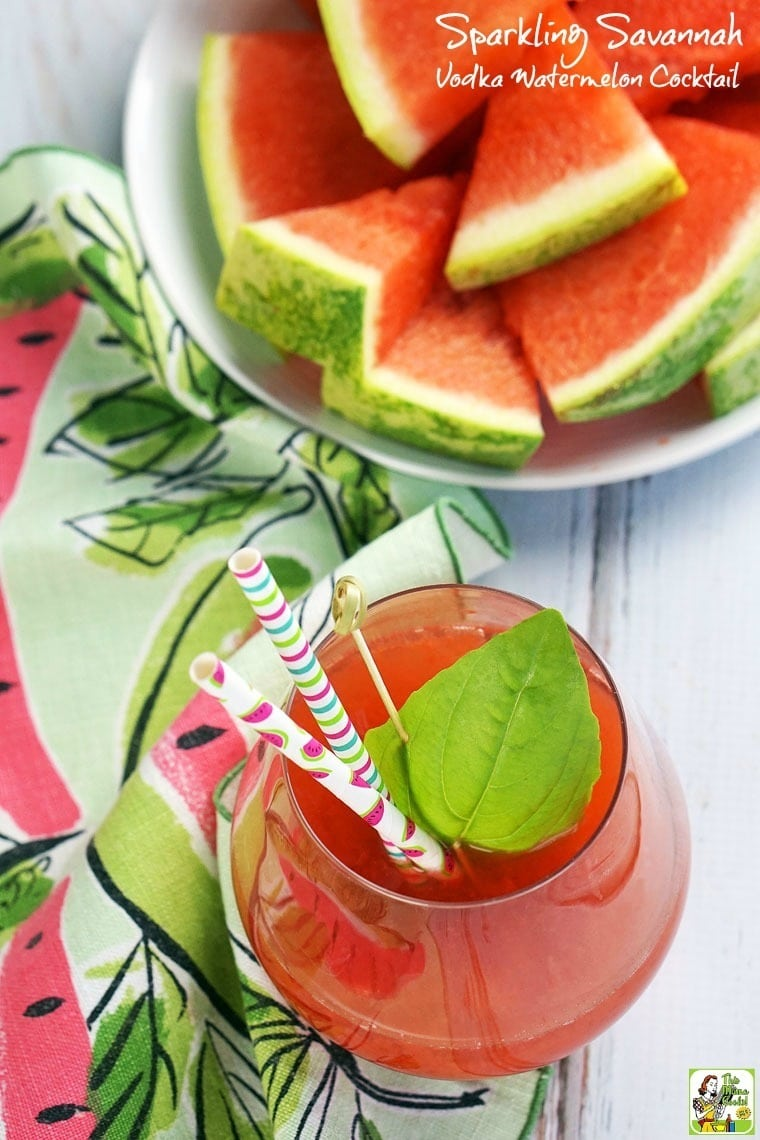 This Sparkling Savannah Vodka Watermelon Cocktail recipe is made with watermelon juice, vodka, sparkling wine and St. Germain liqueur.