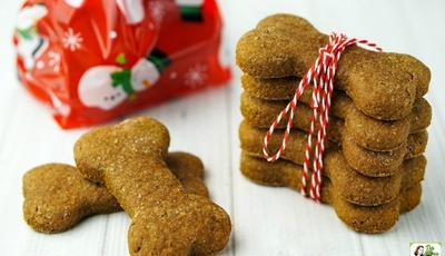 Easy & Healthy Homemade Dog Treats Your Dog Will Love