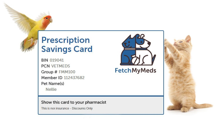 Learn how to get discount pet meds for less through the Fetch My Meds pet meds for less discount card