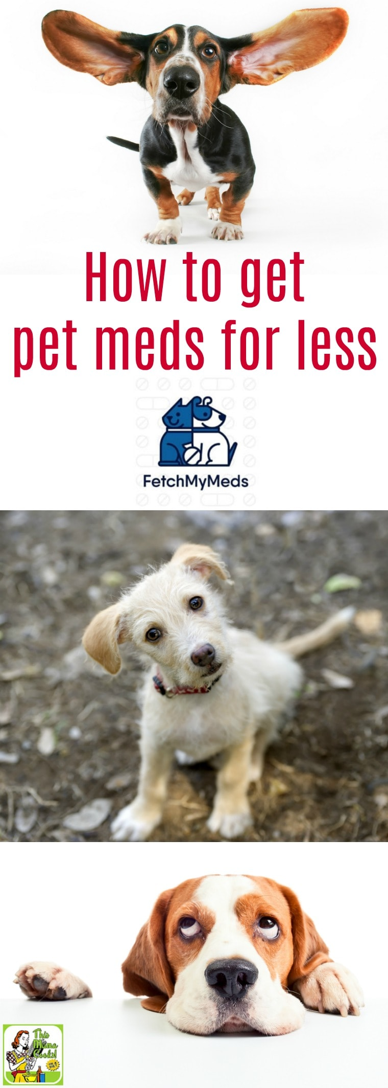 Want to learn how to get pet meds for less? Check out Fetch My Meds, a great program for discount pet meds. It\'s a pet prescription discount card can help you save on pet meds. Free, easy to use and takes only a couple of minutes to sign up. #pets #petmeds #petmedsforless #discountpetmeds #petRx #dogs #cats #lovedogs #lovecats