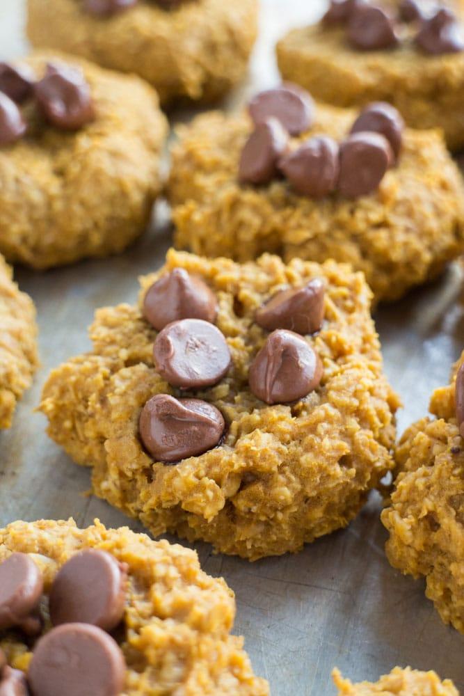 healthy pumpkin desserts: 5 Ingredient Sugar Free Pumpkin Cookies with chocolate chips
