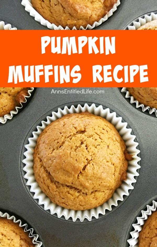 healthy pumpkin muffin recipe: Pumpkin Muffins Recipe