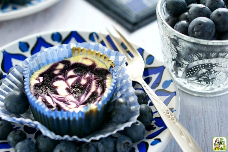 Gluten Free Mini Cheesecake with Blueberry Swirl