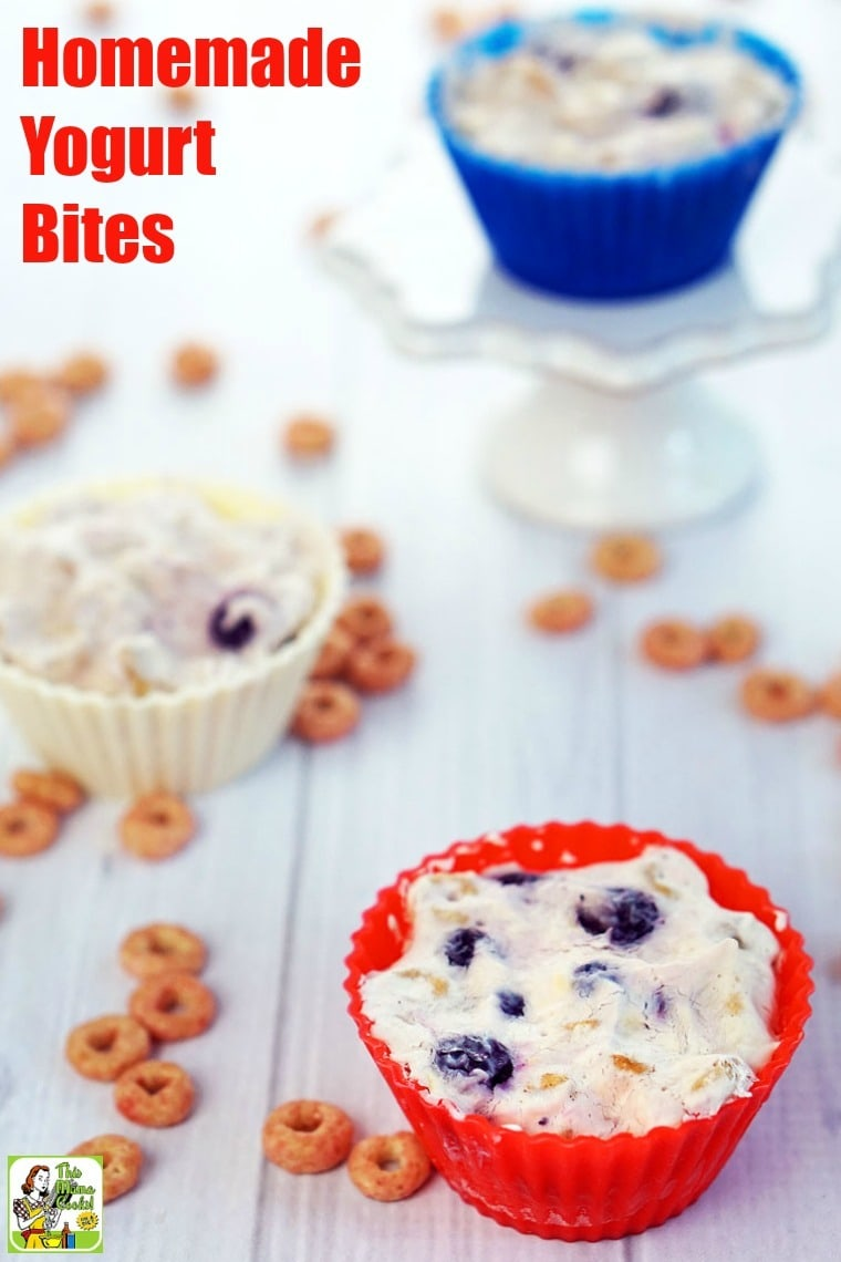 Homemade Yogurt Bites are an easy to make, wholesome breakfast treat or afternoon snack. This yogurt bites recipe contains everything you want in a good-for-you breakfast – fruit and berries, non-fat Greek yogurt, and a whole grain cereal. Gluten free with a dairy free option. #recipes #easy #recipeoftheday #glutenfree #easyrecipe #easyrecipes #glutenfreerecipes #breakfast #snacks #yogurt #kids #kidfriendly