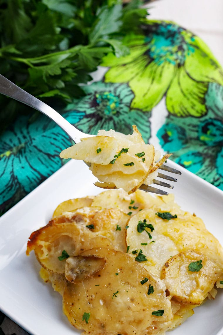 A forkful of scalloped potatoes above a plate of creamy au gratin potatoes with a floral napkin and parsley on the side.