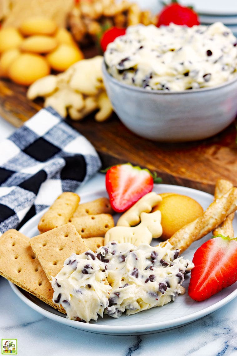 A plate of chocolate chip cookie dough dip, graham crackers, fruit, cookies, and pretzels with napkins, and a bowl of cookie dough dip and more dippers in the background.